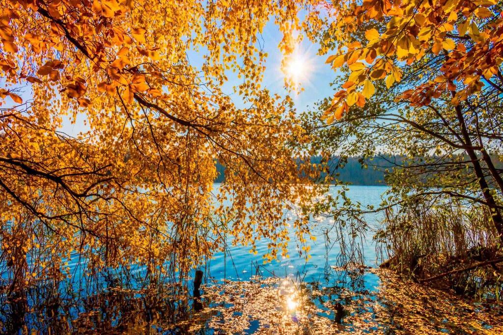 autumn lake wandlitz