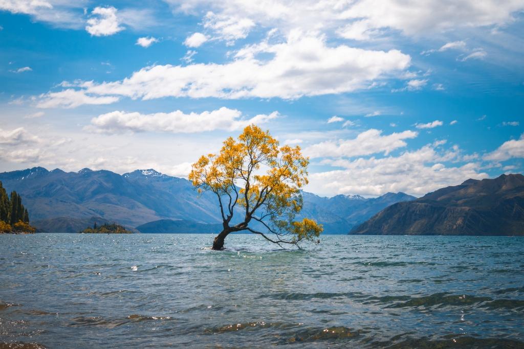 Neuseeland wanaka
