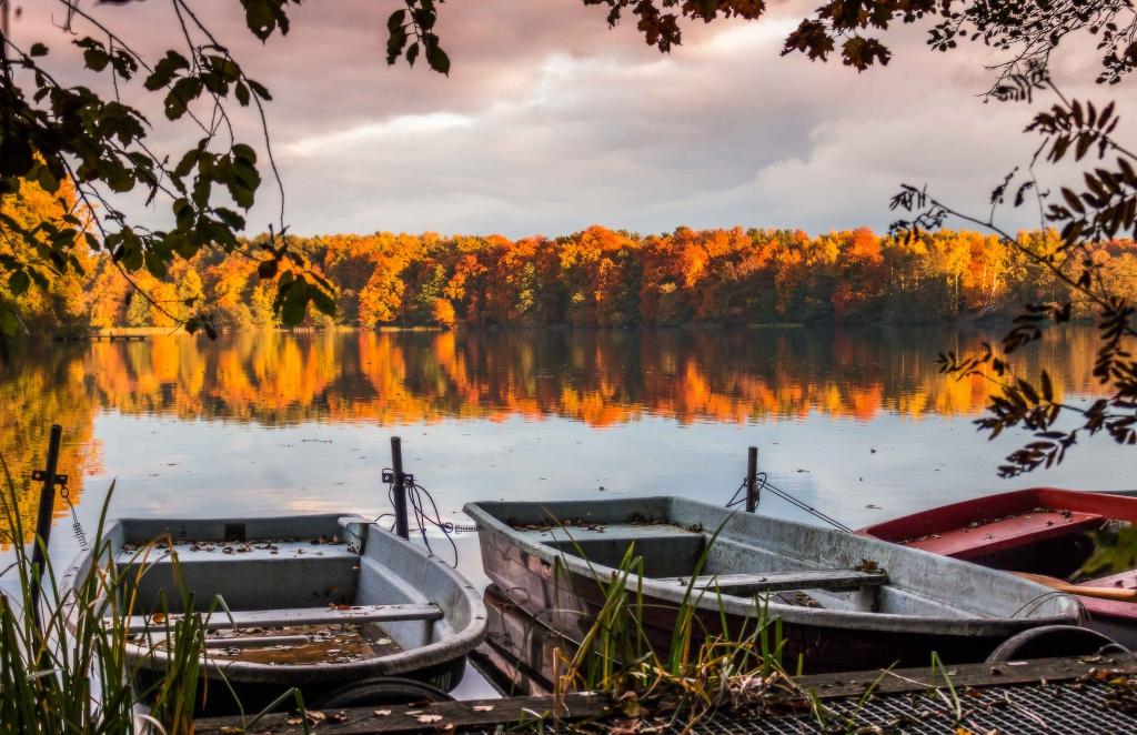 liepnitzsee autumn herbst lake