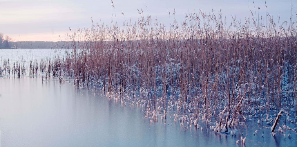 ice winter lake frozen